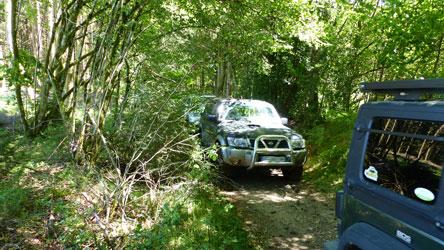 4x4 sur un chemin en forêt