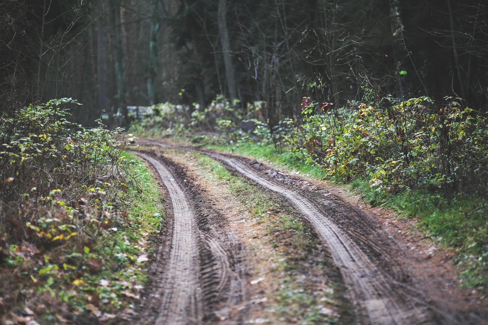 photo chemin 1